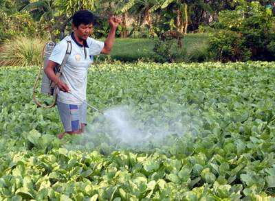 Tự bảo vệ sức khỏe khỏi thuốc bảo vệ thực vật