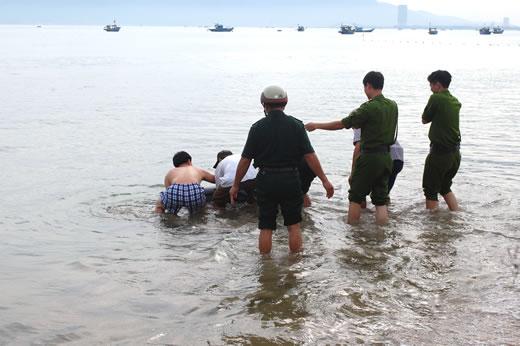 Đà Nẵng: Cá heo 'quyến luyến' người dân, quyết không chịu bơi về biển