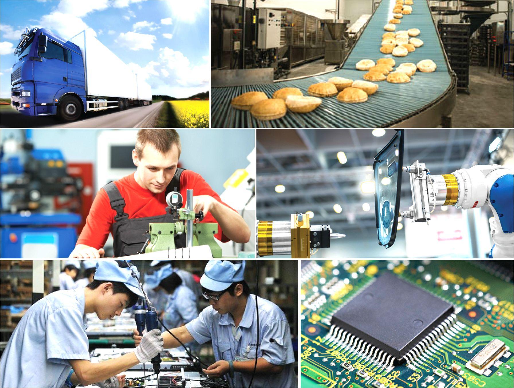 Năng suất chất lượng: Loại hình và mức độ kiểm soát trong ISO