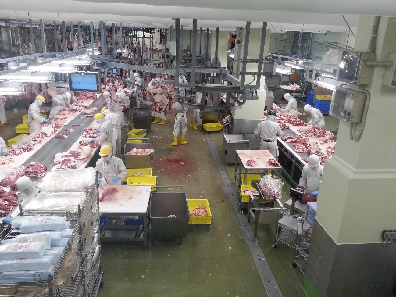 Năng suất chất lượng: 7 nguyên tắc giúp áp dụng thành công HACCP
