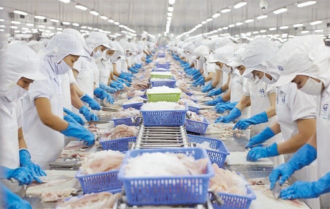Năng suất chất lượng: Khó khăn khi áp dụng HACCP