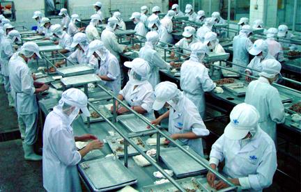 Năng suất lao động yếu tố then chốt giúp doanh nghiệp phát triển bền vững
