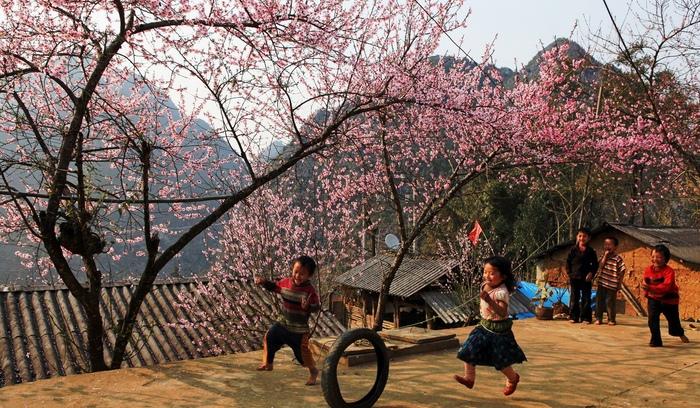 5 địa điểm nên du lịch dịp Tết Kỷ Hợi 2019
