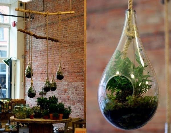 Kỹ thuật trồng cây cảnh trong lọ thủy tinh cực đáng yêu - ảnh 2
