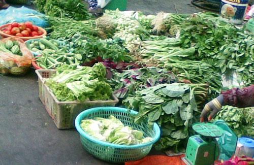 Rau quả tồn dư hợp chất bảo vệ thực vật sẽ gây hại cho sức khỏe người dùng.