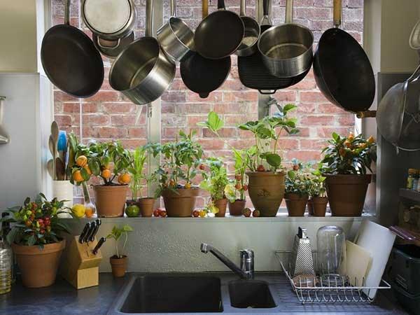 Dụng cụ nhà bếp là đồ dùng không thể thiếu. Ảnh minh họa