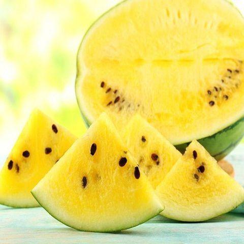 Kỹ thuật trồng cây và mẹo làm cho quả dưa hấu ruột vàng ngọt lịm  - ảnh 2