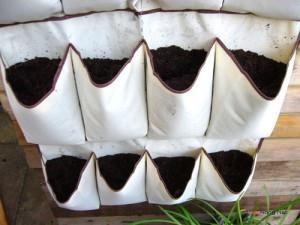 Kỹ thuật trồng rau sạch bằng túi vải độc và lạ. Ảnh minh họa