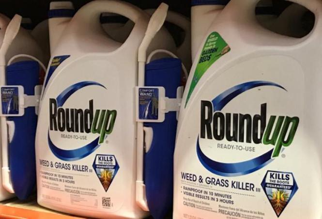 Sản phẩm có chứa hoạt chất glyphosate đang được tẩy chay tại Mỹ. Ảnh: Thanh Niên