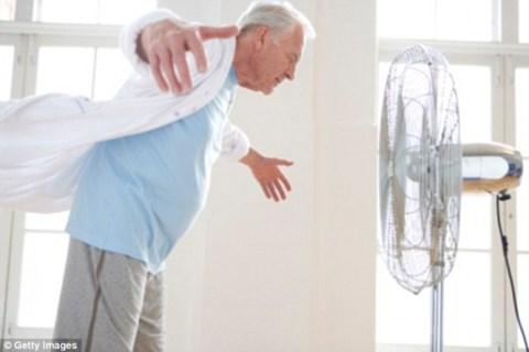 Quạt điện là thiết bị không thể thiếu trong mỗi gia đình nhưng không tốt khi nằm quá nhiều nhất là người già. Ảnh: ANTĐ