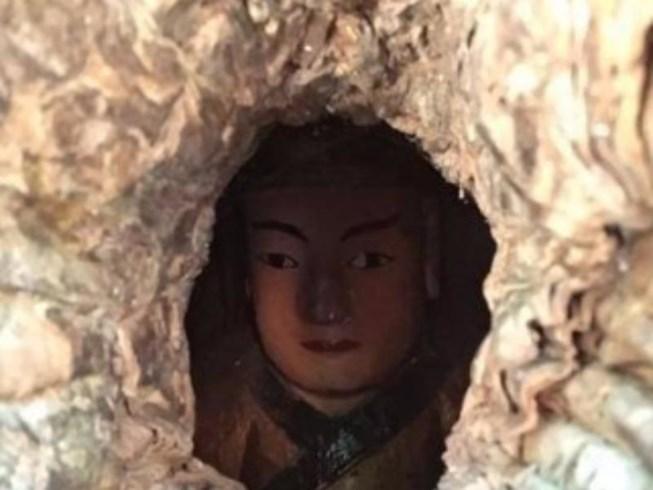 Hình ảnh đầu bức tượng nằm trong thân cây được người dân phát hiện. Ảnh: pháp luật TPHCM Hình ảnh đầu bức tượng nằm trong thân cây được người dân phát hiện. Ảnh: pháp luật TPHCM