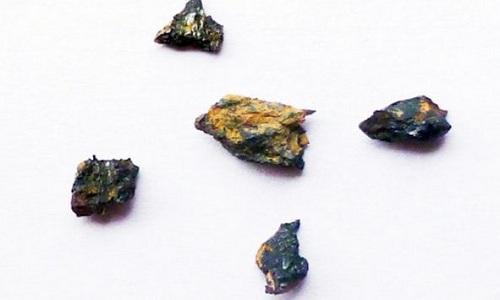 Viên đá được giới khoa học tìm thấy vào năm 1996. Ảnh: VnExpress
