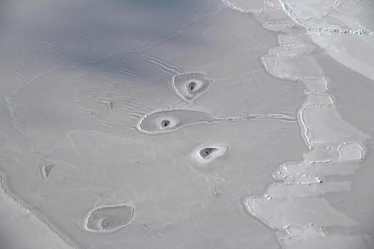 Hình ảnh những chiếc lỗ bí ẩn xuất hiện trên Bắc Băng Dương. Ảnh: Người lao động