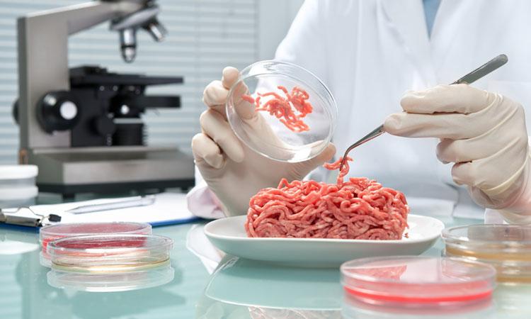 Các nhà khoa học tìm thấy khuẩn E.coli trong thịt bán lẻ. Ảnh: Newfoodmagazine.