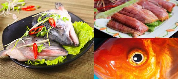 Nhiều bộ phận của cá không nên ăn vì có thể gây họa cho sức khỏe