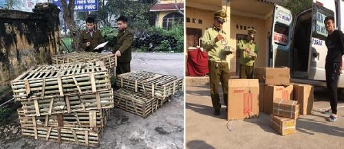 Lực lượng quản lý thị trường Lạng Sơn thu giữ lượng lớn kẹo, mèo nhập lậu từ Trung Quốc về Việt Nam bán