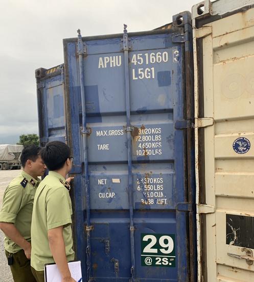 Lực lượng chức năng tỉnh Lào Cai tiến hành kiểm tra kho chứa hạt dẻ vi phạm. Ảnh: Cục QLTT Lào Cai