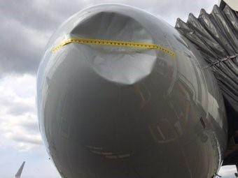 Từng có không ít lần máy bay gặp sự cố vì đụng độ với chim khi đang bay.