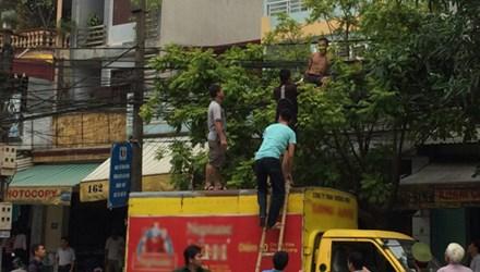 Để mình trần, nam thanh niên trườn ra đường dây điện ở TP Thanh Hóa