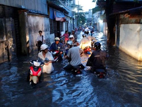 Bệnh nào dễ 'tấn công' con người mùa mưa ngập?