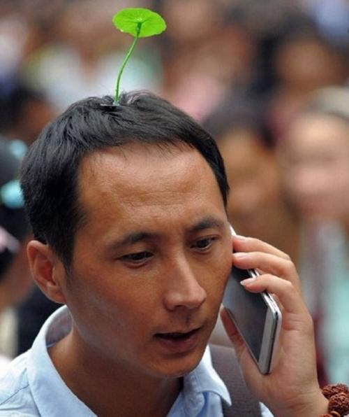 Mốt kẹp tóc mọc cây trên đầu tràn về Việt Nam