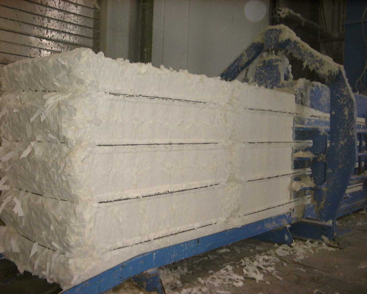 Ứng dụng công nghệ sinh học trong sản xuất bột giấy