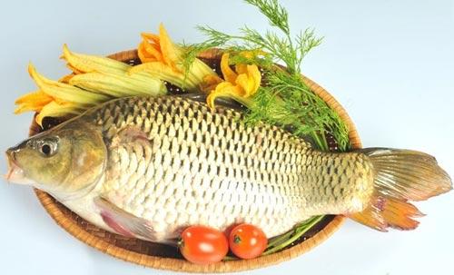 Người già ăn nhiều cá là cách chống lão hóa rất hiệu quả