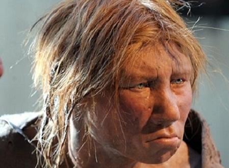 Người nguyên thủy Neanderthal với hình dáng đặc trưng: chiếc mũi nhô ra trên một khuôn mặt to lớn, vầng trán đồ sộ và không có cằm