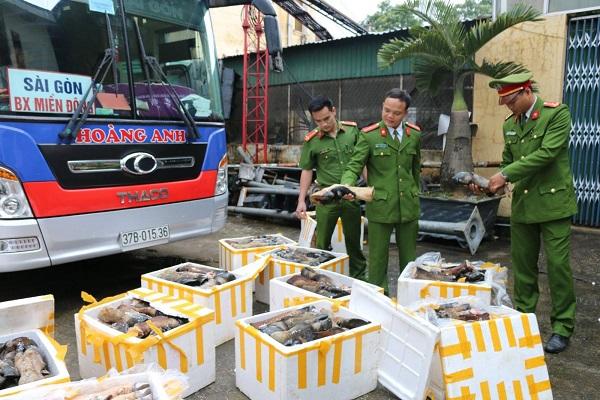 Bắt giữ hơn 1 tấn chân, đuôi trâu bò bốc mùi hôi thối tại Hà Tĩnh