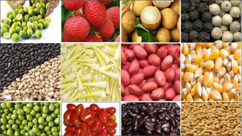 nông sản việt nam, người tiêu dùng, xuất ngoại, siêu thị mỹ, thương hiệu