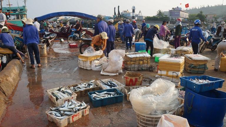 chợ cá đảo Lý Sơn