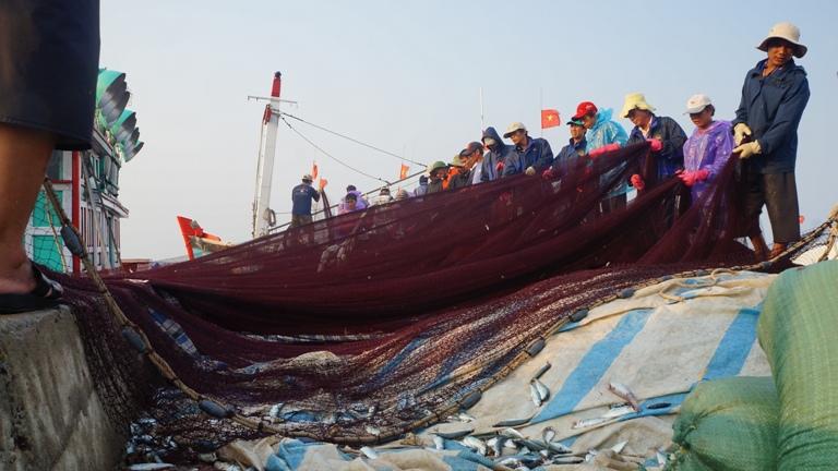 chợ cá Lý Sơn