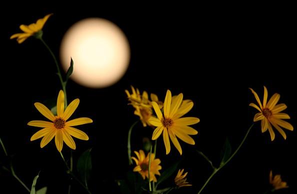 Bức ảnh chụp mặt trăng đúng vào đêm Trung thu ở tỉnh Sơn Đông, Trung Quốc