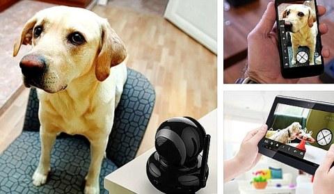 Người chủ sẽ không phải lo lắng về những con vật nuôi của mình với thiết bị này