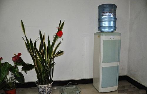 Theo phong thủy, bình uống nước cần đặt đúng vị trí