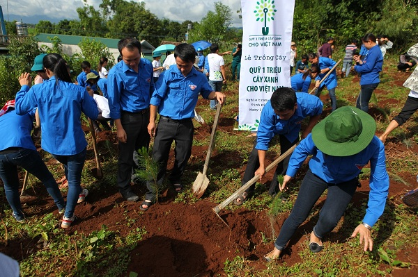 Các đoàn viên thanh niên tại Điện Biên cùng tham gia trồng cây