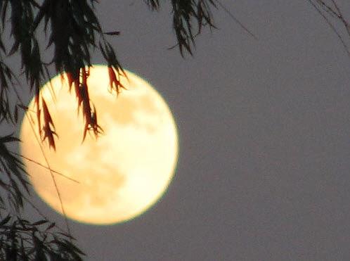 Rằm tháng Giêng là ngày trăng tròn đầu tiên của năm mới