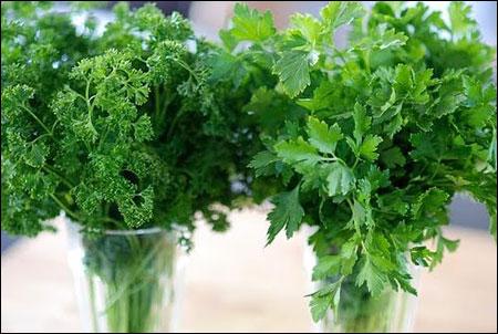 Các loại rau thơm cần được nhặt sạch, rửa và để ráo nước, sau đó bọc màng bảo vệ thực phẩm để bảo quản trong tủ lạnh