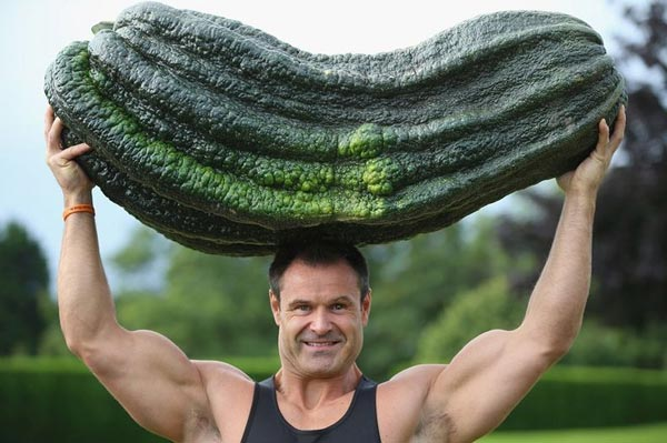 Alton Towers sẽ hợp tác với chủ nhân của những loại rau quả khổng lồ