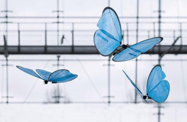 Robot bướm có ngoại hình giống như thật