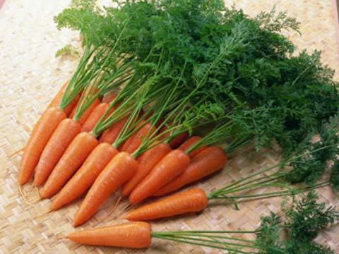 Sau khi mua cà rốt về không nên để lại lá