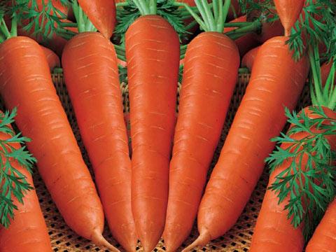 Sai lầm ăn uống gây nguy hiểm ít ai ngờ khi sử dụng cà rốt