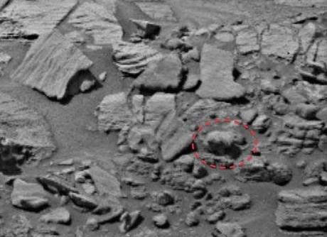 Đây có thực sự là sinh vật sống trên Sao Hỏa. Ảnh: UFO Sightings Daily