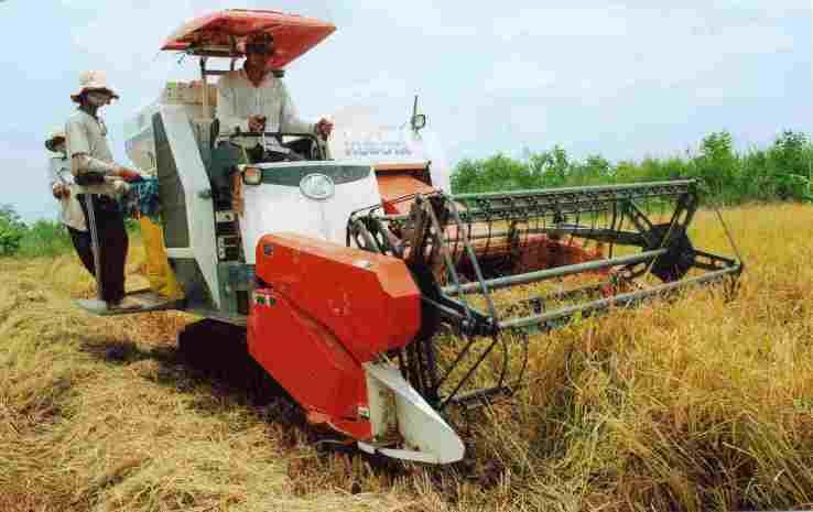 Tái cơ cấu nông nghiệp