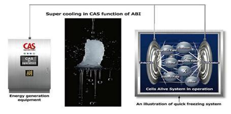 Kết quả lạnh đông CAS là giữ được chất lượng sản phẩm tươi nguyên như ban đầu.