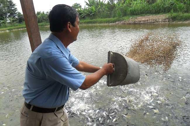 Nhóm khoáng chất đa lượng duy trì ổn định pH trong cơ thể động vật thủy sản.