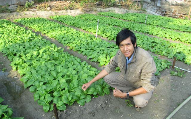 Lê Minh Vương tìm hiểu kỹ thuật bên vườn rau sạch tại Củ Chi