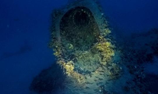 Con tàu mất tích bí ẩn nằm sâu 100m dưới mặt biển