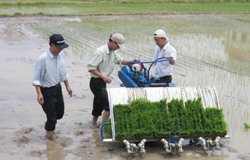 Máy cấy của TS Lê Sỹ Hùng giúp người nông dân cấy mạ tốt hơn