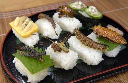 SƠ CHẾ ĐÚNG CÁCH: Sơ chế, chế biến an toàn. Để có một món ăn ngon, an toàn từ côn trùng chúng ta phải để chúng thải hết chất độc trong người bằng cách ngâm vào nước muối ấm, nước vôi. Đồng thời loại bỏ ruột, cánh, chân, vời, đầu. Sau khi rứa sạch với nước thì chúng ta có thể chế biến thành những món ăn yêu thích. Thế nhưng tuyệt đối không được ăn sống, tái hay không nầu chín mà không qua sơ chế.